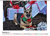 German Shepherd Dog with Friends (Wall Calendar 2019 DIN A3 Landscape) - Produktdetailbild 12