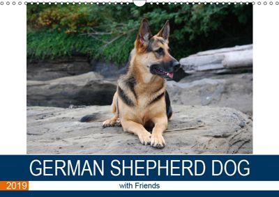 German Shepherd Dog with Friends (Wall Calendar 2019 DIN A3 Landscape), S. N. Little