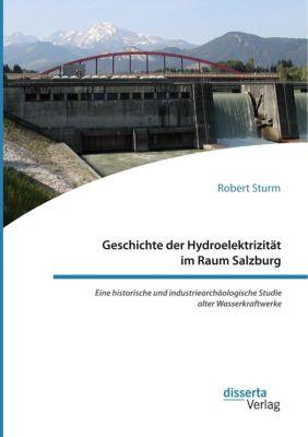 Geschichte der Hydroelektrizität im Raum Salzburg. Eine historische und industriearchäologische Studie alter Wasserkraft, Robert Sturm