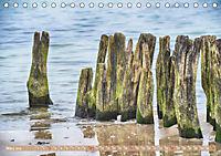 Gestaltet vom Meer (Tischkalender 2019 DIN A5 quer) - Produktdetailbild 3