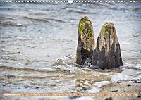 Gestaltet vom Meer (Wandkalender 2019 DIN A3 quer) - Produktdetailbild 9