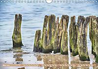 Gestaltet vom Meer (Wandkalender 2019 DIN A4 quer) - Produktdetailbild 3