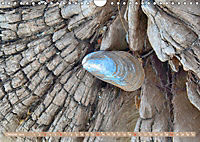Gestaltet vom Meer (Wandkalender 2019 DIN A4 quer) - Produktdetailbild 10