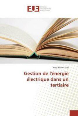 Gestion de l'énergie électrique dans un tertiaire, Noël Rivarol Meli