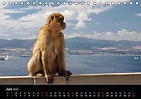 Gibraltar - der Affenfelsen (Tischkalender 2019 DIN A5 quer) - Produktdetailbild 6