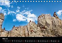 Gibraltar - der Affenfelsen (Tischkalender 2019 DIN A5 quer) - Produktdetailbild 5
