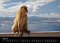 Gibraltar - der Affenfelsen (Wandkalender 2019 DIN A2 quer) - Produktdetailbild 6