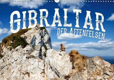 Gibraltar - der Affenfelsen (Wandkalender 2019 DIN A3 quer), Carina Buchspies