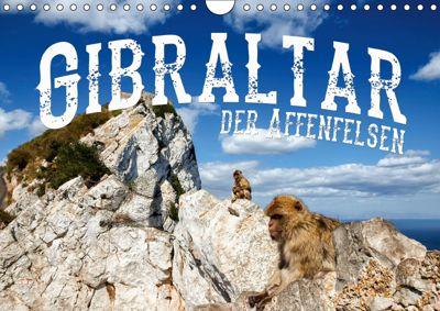 Gibraltar - der Affenfelsen (Wandkalender 2019 DIN A4 quer), Carina Buchspies