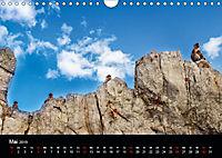 Gibraltar - der Affenfelsen (Wandkalender 2019 DIN A4 quer) - Produktdetailbild 5