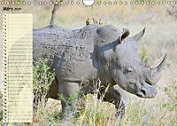Giganten. Die grössten Säugetiere der Welt (Wandkalender 2019 DIN A4 quer) - Produktdetailbild 3