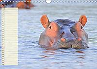 Giganten. Die grössten Säugetiere der Welt (Wandkalender 2019 DIN A4 quer) - Produktdetailbild 4