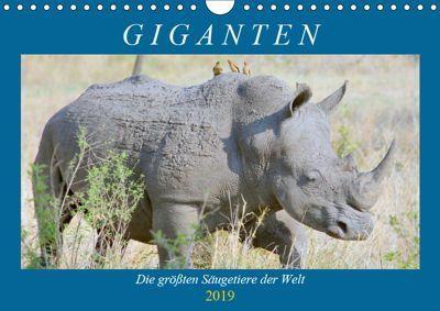 Giganten. Die grössten Säugetiere der Welt (Wandkalender 2019 DIN A4 quer), Rose Hurley