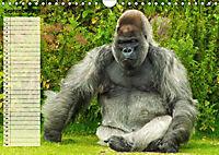 Giganten. Die größten Säugetiere der Welt (Wandkalender 2019 DIN A4 quer) - Produktdetailbild 9