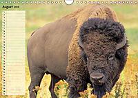 Giganten. Die grössten Säugetiere der Welt (Wandkalender 2019 DIN A4 quer) - Produktdetailbild 8
