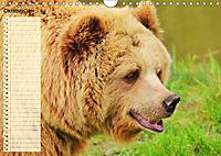 Giganten. Die größten Säugetiere der Welt (Wandkalender 2019 DIN A4 quer) - Produktdetailbild 10