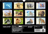 Giganten. Die grössten Säugetiere der Welt (Wandkalender 2019 DIN A4 quer) - Produktdetailbild 13