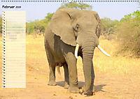 Giganten. Die grössten Säugetiere der Welt (Wandkalender 2019 DIN A2 quer) - Produktdetailbild 2