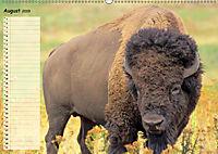 Giganten. Die grössten Säugetiere der Welt (Wandkalender 2019 DIN A2 quer) - Produktdetailbild 8