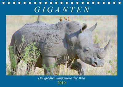 Giganten. Die grössten Säugetiere der Welt (Tischkalender 2019 DIN A5 quer), Rose Hurley
