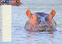 Giganten. Die grössten Säugetiere der Welt (Tischkalender 2019 DIN A5 quer) - Produktdetailbild 4