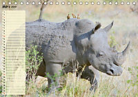 Giganten. Die größten Säugetiere der Welt (Tischkalender 2019 DIN A5 quer) - Produktdetailbild 3