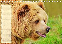Giganten. Die grössten Säugetiere der Welt (Tischkalender 2019 DIN A5 quer) - Produktdetailbild 10