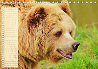 Giganten. Die größten Säugetiere der Welt (Tischkalender 2019 DIN A5 quer) - Produktdetailbild 10