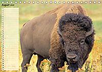 Giganten. Die grössten Säugetiere der Welt (Tischkalender 2019 DIN A5 quer) - Produktdetailbild 8