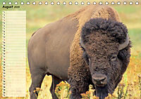 Giganten. Die größten Säugetiere der Welt (Tischkalender 2019 DIN A5 quer) - Produktdetailbild 8