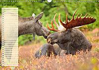 Giganten. Die größten Säugetiere der Welt (Wandkalender 2019 DIN A3 quer) - Produktdetailbild 6