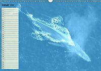 Giganten. Die grössten Säugetiere der Welt (Wandkalender 2019 DIN A3 quer) - Produktdetailbild 1