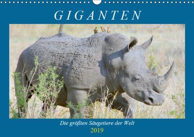 Giganten. Die grössten Säugetiere der Welt (Wandkalender 2019 DIN A3 quer), Rose Hurley