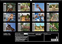 Giraffen. Dem Himmel so nah (Wandkalender 2019 DIN A2 quer) - Produktdetailbild 12