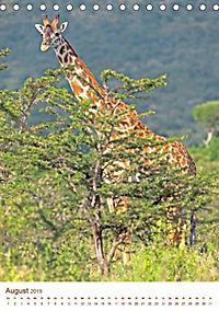 Giraffen: Schlanke Schönheiten aus Afrika (Tischkalender 2019 DIN A5 hoch) - Produktdetailbild 8
