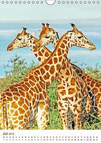 Giraffen: Schlanke Schönheiten aus Afrika (Wandkalender 2019 DIN A4 hoch) - Produktdetailbild 7