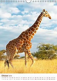 Giraffen: Schlanke Schönheiten aus Afrika (Wandkalender 2019 DIN A4 hoch) - Produktdetailbild 10