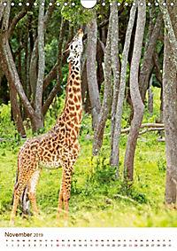 Giraffen: Schlanke Schönheiten aus Afrika (Wandkalender 2019 DIN A4 hoch) - Produktdetailbild 11