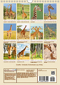 Giraffen: Schlanke Schönheiten aus Afrika (Wandkalender 2019 DIN A4 hoch) - Produktdetailbild 13
