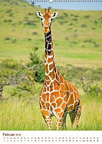 Giraffen: Schlanke Schönheiten aus Afrika (Wandkalender 2019 DIN A2 hoch) - Produktdetailbild 2