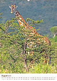 Giraffen: Schlanke Schönheiten aus Afrika (Wandkalender 2019 DIN A2 hoch) - Produktdetailbild 8