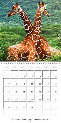 Giraffes - Swinging Elegance (Wall Calendar 2019 300 × 300 mm Square) - Produktdetailbild 1