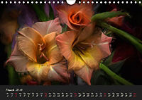 Gladiolus Floral Impressions (Wall Calendar 2019 DIN A4 Landscape) - Produktdetailbild 3