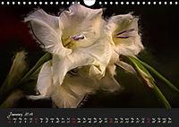 Gladiolus Floral Impressions (Wall Calendar 2019 DIN A4 Landscape) - Produktdetailbild 1