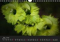 Gladiolus Floral Impressions (Wall Calendar 2019 DIN A4 Landscape) - Produktdetailbild 7