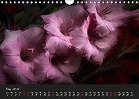 Gladiolus Floral Impressions (Wall Calendar 2019 DIN A4 Landscape) - Produktdetailbild 5