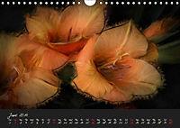 Gladiolus Floral Impressions (Wall Calendar 2019 DIN A4 Landscape) - Produktdetailbild 6
