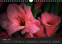 Gladiolus Floral Impressions (Wall Calendar 2019 DIN A4 Landscape) - Produktdetailbild 10
