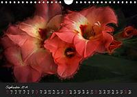Gladiolus Floral Impressions (Wall Calendar 2019 DIN A4 Landscape) - Produktdetailbild 9