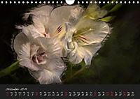 Gladiolus Floral Impressions (Wall Calendar 2019 DIN A4 Landscape) - Produktdetailbild 12